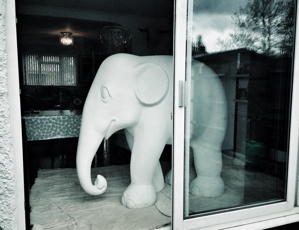 Elephant's arrival